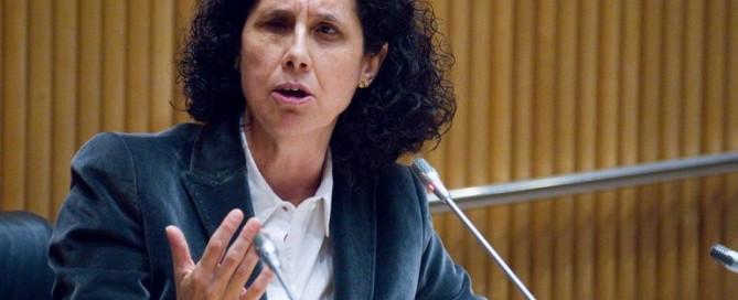 Ana Pélaez interviene en Naciones Unidas